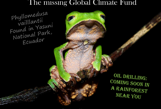 The missing Global Climate Fund