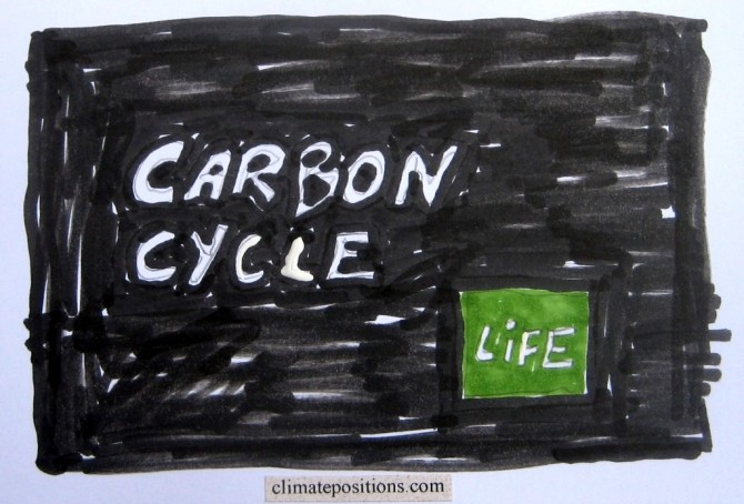 Carbon cycle for beginners