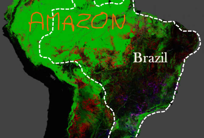 Brazil's rainforests and climate change performance
