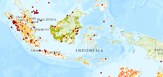 Indonesia, forest fires and oil palms