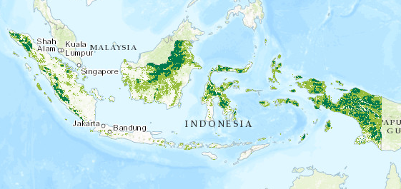 Indonesia, primary forests, two categories