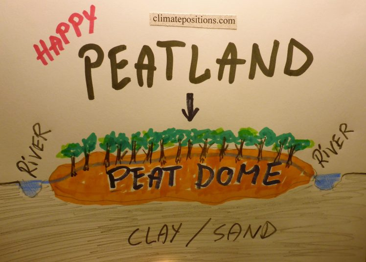 Climate change performance: South Korea vs. Indonesia (peatlands in Southeast Asia)